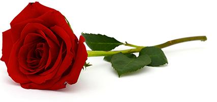 romantico-